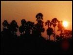 Sunset Enroute Kancheepuram