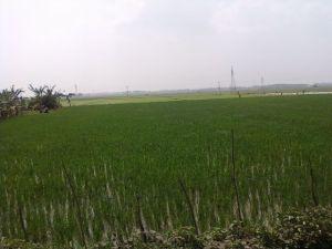 Approaching Kanyakumari