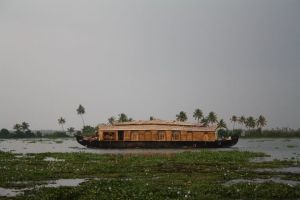 A houseboat into the backwaters of Allepy