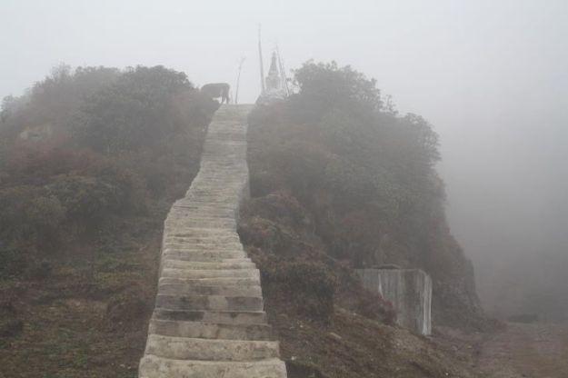 Stairs enroute Sandakphu