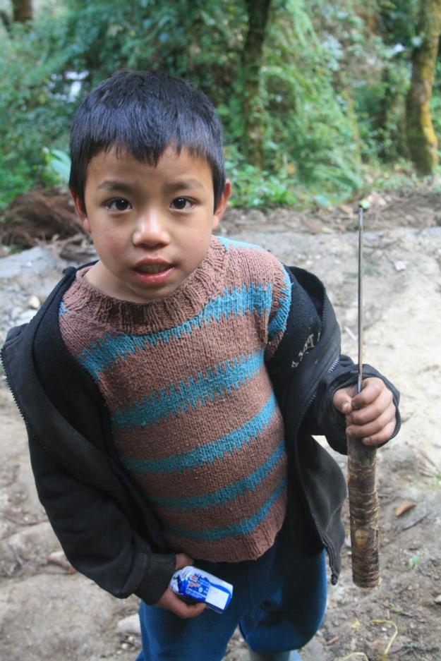 Villager Farmboy