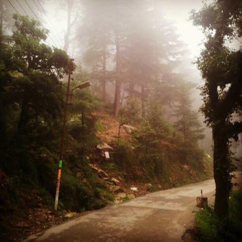 The ever foggy McLeodganj…