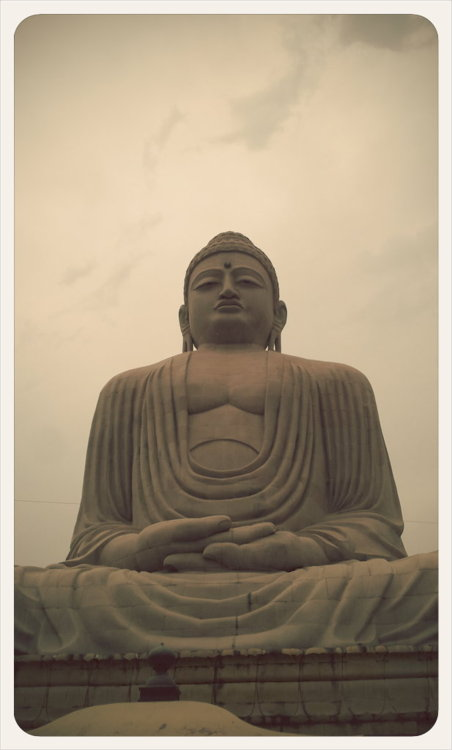 Buddha Statue in the Japanese Temple