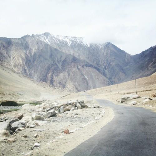 Pangong Tso, Ladakh, Leh, Jammu and Kashmir, India, travel, himalayas