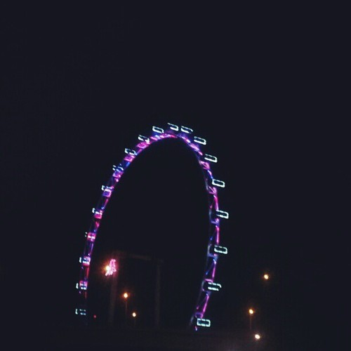 Singapore Flyer - Beautifully lit up Ferris Wheel at night